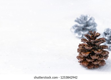 Brown and silver pine cones like Christmas trees in snow against white background