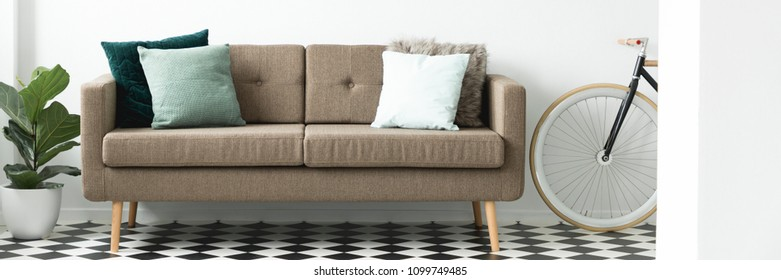 Brown sofa with decorative pillows placed in white living room interior with linoleum floor, fresh plant and bike