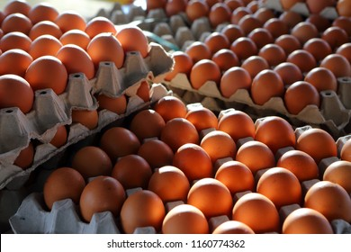 Brown and speckled chicken eggs in the egg tray cardboard with room for the eggs, pile egg on box, fresh raw chicken eggs in package for sale in supermarket
