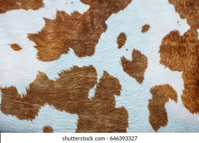 brown spotted cow hide as background texture