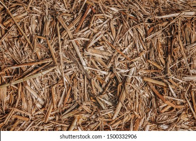 the brown straw texture background
