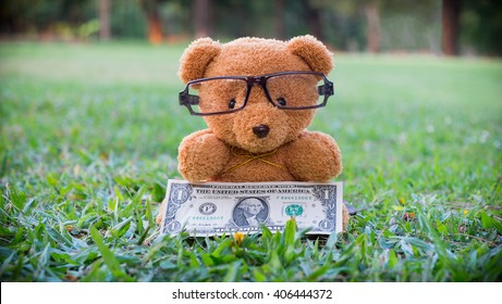 Brown teddy bear holding dollar banknote., Saving for retirement, Saving for education, Saving for Stability