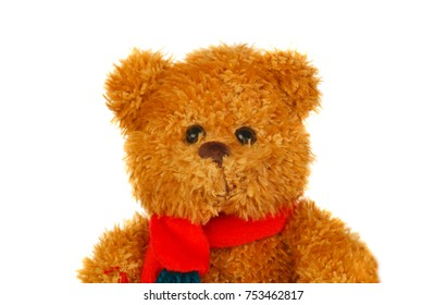 Brown teddy bear with red scarf isolated on a white background
