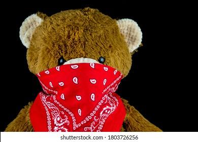 Brown teddy bear wearing bandana on face isolated on black