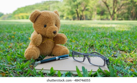 Brown teddy sitting on lawn, business planning