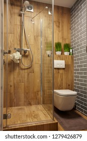 Brown tones bathroom with glass door shower, toilet and brick wall.And green plants.