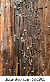 Brown Utility Pole covered with nails and staples
