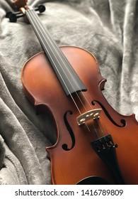 Brown Violin on grey background
