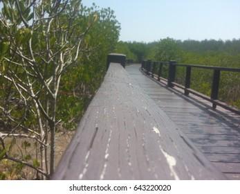 Brown Wood Bridge in Mangroves, walkway , Surface texture