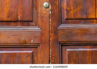 Brown wood door - texture.