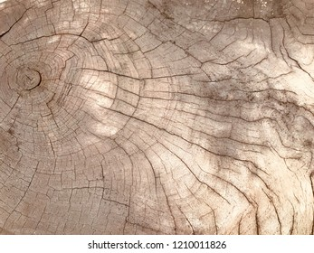 Brown Wood Surface Background