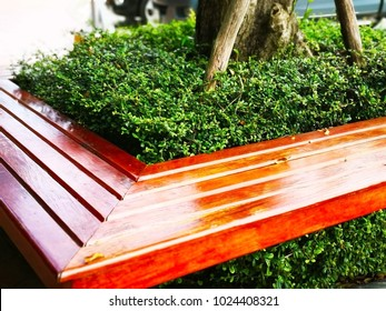 The brown wooden bench was built around the tree and planted the small shrub in the middle, located along sidewalk in the public park in Thailand. Selective focus and copy space.