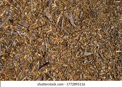 Brown wooden chips close-up. Decorative wood splinters texture. Natural material background of wooden pieces of tree bark. Dry wooden shavings, sawdust.