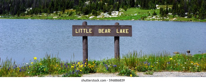 Brown, wooden sign, labeling Little Bear Lake, stands in front of lake on the Beartooth Pass Scenic Byway in Wyoming.  Wildflowers bloom on shore of lake.