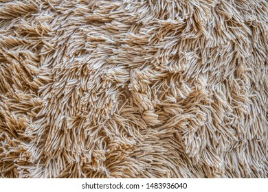 Brown wool with yellow and brown top texture background, light natural sheep wool, beige seamless cotton, texture of fluffy fur for designers, close-up fragment beige wool carpet