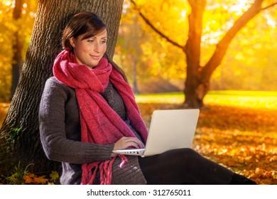 browsing the web in fall season