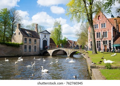 Bruges, Belgium - April 17, 2017: Swans in lake of love in Bruges, channel panoramic view near Begijnhof