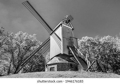 Bruges, Belgium: New Parrot (Nieuwe Papegaai ) windmill  in black and white. Traditional wooden windmill in Belgium