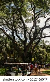 Brumadinho, Brazil - Dec 27, 2017: Visitors at Inhotim Institute, a museum and botanical garden, located in Brumadinho in the Brazilian state of Minas Gerais