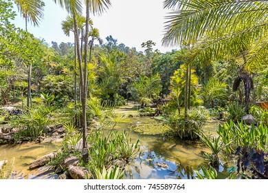 Brumadinho, Minas Gerais, Brazil. View of Inhotim Gardens