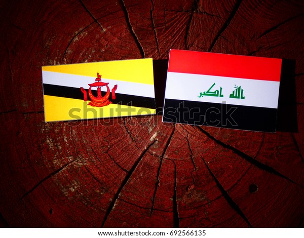 Brunei flag with Iraqi flag on a tree stump isolated
