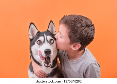 the brunette boy kisses his happy smiling dog of the husky breed, the concept of children's and dog emotions, of friendship