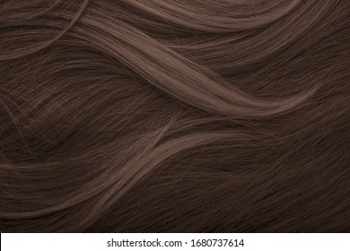 Brunette or brown hair. Female long dark hair in black. Beautifully laid curls. Closeup texture in a dark key. Hairdressing, hair care and coloring. Shading gray hair. Background with copy space.