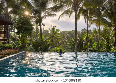 Brunette girl in a white swimsuit in the outdoor swimming pool on the green jungle background on Bali. She leans on the pool's edge. Sun is breaking through the clouds. Shoot from the back.