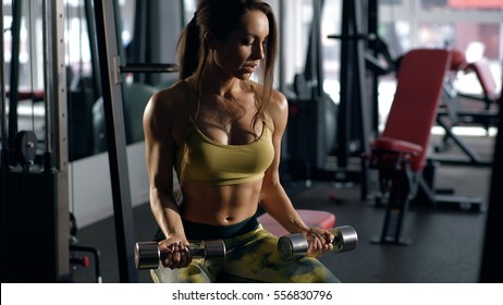 Brunette lifting dumbbell and working on her biceps in a gym. Young lady with beautiful body. Determined sexy woman working on own shape.