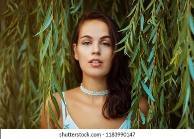 brunette woman against willow tree background