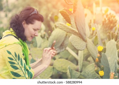 Brunette woman photographs on the phone cactus