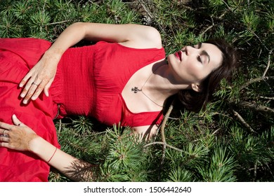 Brunette woman in a red dress is lying on pine branches