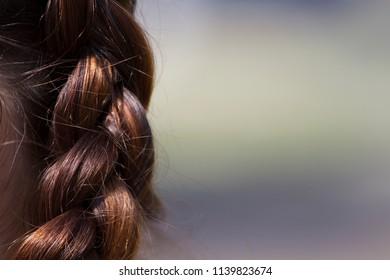 A brunette woman's hair in a Dutch braid.