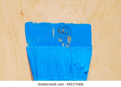 Brush in blue paint