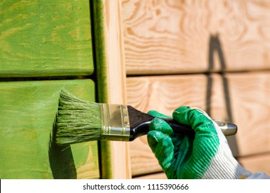 brush painter close-up painting wooden wall in green on sunlight outdoor shot