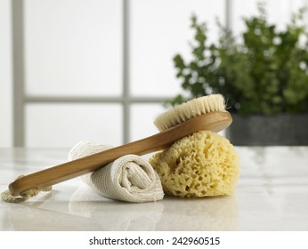 brush ,sponge and rolled up hand towel