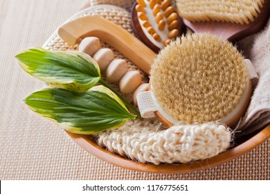 brushes for dry body massage