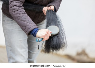brushing a black tail of a brown horse