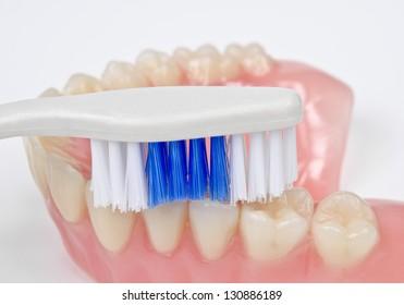 brushing denture