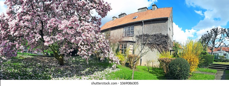 Brussels, Belgium - 15 April 2018: Panoramic view of a house with blossoming magnolia trees on a sunny day in the spring in Floreal, Brussels. The Floreal garden city is a famous tourist area.