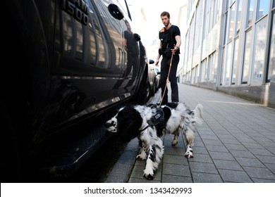 Brussels, Belgium. 19th March 2019. A police officer with a sniffer dog search around a vehicle during a bomb threat in a building near to European institutions.