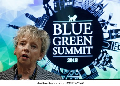 Brussels, Belgium. 24th May 2018. Debbie Dooley ,President at Conservatives for Energy Freedom and Green Tea Coalition attends in a Blue - Green summit.