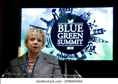 Brussels, Belgium. 24th May 2018. Debbie Dooley,President at Conservatives for Energy Freedom and Green Tea Coalition attends in a Blue - Green summit.