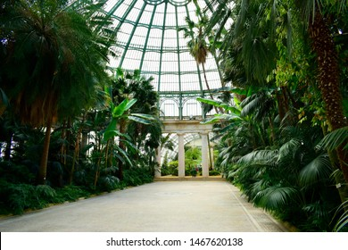 BRUSSELS, BELGIUM - April 24, 2019: Beautiful foliage with the roof interior the Royal greenhouses of Laeken, this place is one of the famous tourist destination in Brussels ,Belgium
