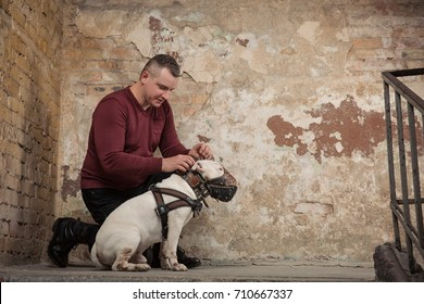 brutal caucasian adult man in red sweater or pullover sitting on stone stairs with serious face against background of a peeling wall. Dog Trainer.