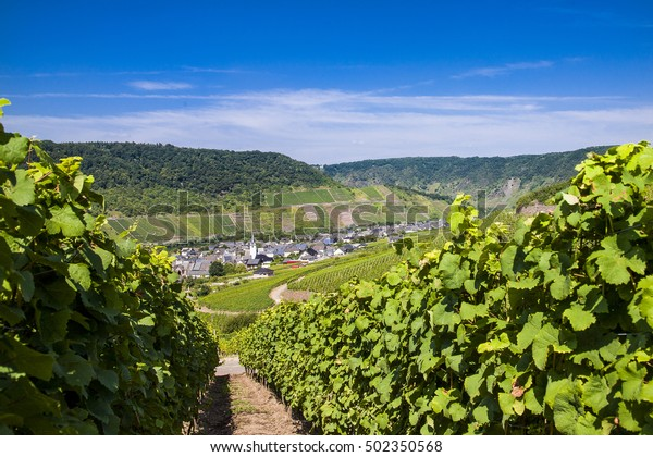 Bruttich-Fankel on the river Mosel in Germany, Europe