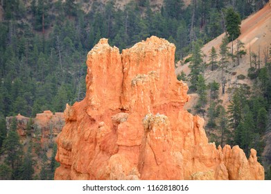 Bryce Canyon City, Utah, USA on July 27, 2018 : Natural landscape in Bryce canyon national park.