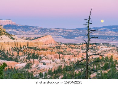 Bryce Canyon At DuskWith Full Moon