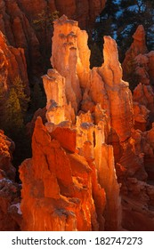 Bryce Canyon National Park Hoodoos Sunrise Utah