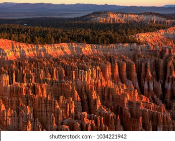 Bryce Canyon National Park in the Morning Sunlight, Utah